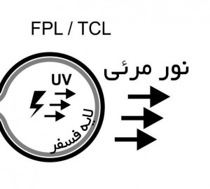 FPL CrossSection2